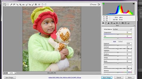 how to install camera raw plugin in photoshop cs6 ( free