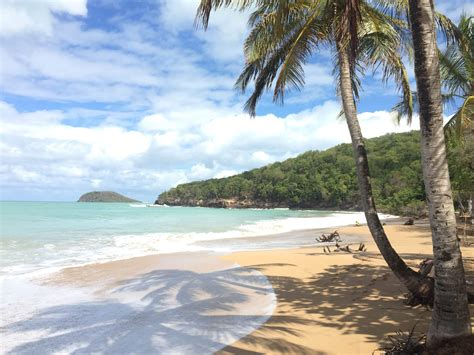 Guadeloupe Beach Guide: Must Visit Island Beaches