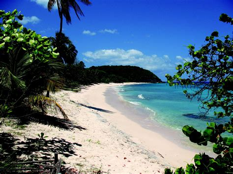 Travel Guadeloupe Island Vacation and Holiday Guide